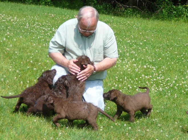 Chesapeake Bay Retriever breeder, Don Crampton