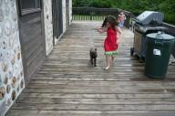 chesapeake-pups-carleton-place1