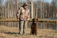 About Chesapeake Bay Retrievers